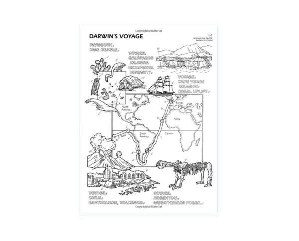 Coloring Concepts Human Evolution Coloring Book