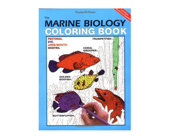 Coloring Concepts Marine Biology Coloring Book