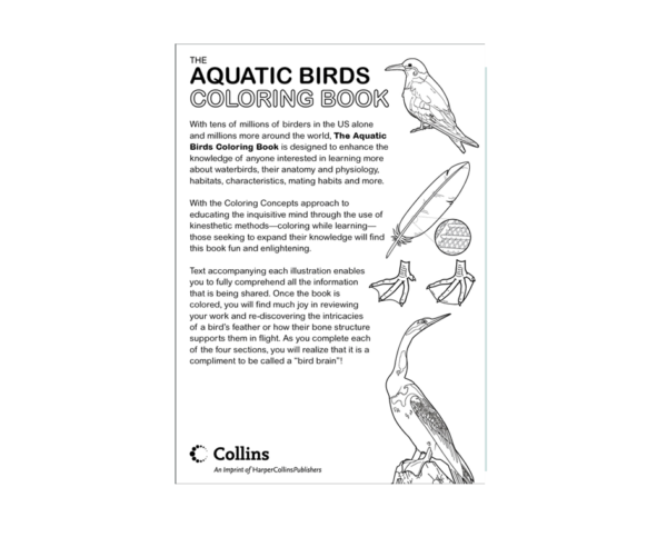 Coloring Concepts Aquatic Birds Coloring Book