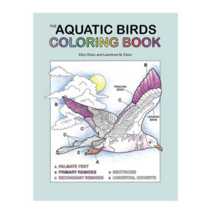Coloring Concepts Aquatic Birds Coloring Book